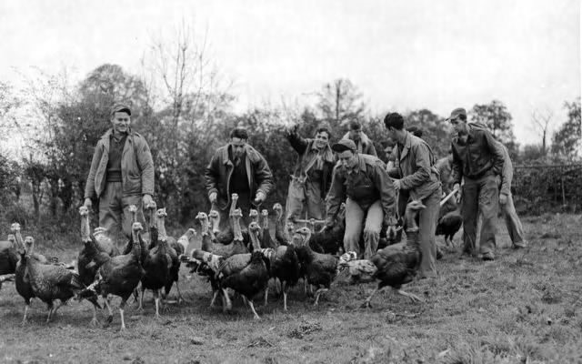 After receiving permission from the farm owner, these American airmen, stationed at an airbase in Norfolk, England, invade a turkey pen to choose their annual Thanksgiving dinner, 6 November 1943 (US Army Air Force photo)