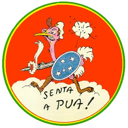 Badge of First Brazilian Fighter Group, WWII