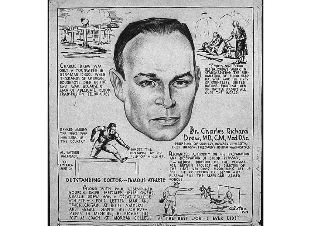 A summary of the life of Charles Drew by artist Charles Alston, 1943 (US National Archives 535693)