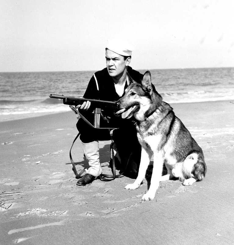 US Coast Guardsman and dog on beach patrol, Parramore Beach, VA, 21 Oct 1943 (US Coast Guard photo)
