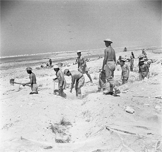 British troops digging defensive trenches near El Alamein, Egypt, 4 Jul 1942 (Imperial War Museum)