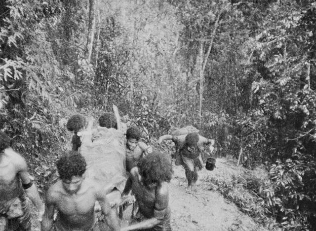Papuan carriers evacuate Australian casualties near Isurava, 30 Aug 1942 (Australian War Memorial)