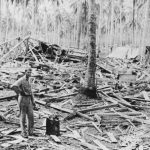 Wreckage of US radio station at Henderson Field, Guadalcanal, after Japanese bombardment, 14 October 1942 (US Army Center of Military History)