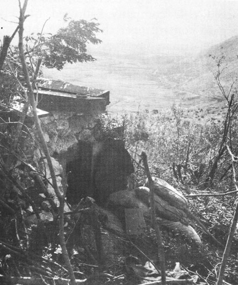 German pillbox on Monte Lungo, Italy, 1943 (US Army Center of Military History)