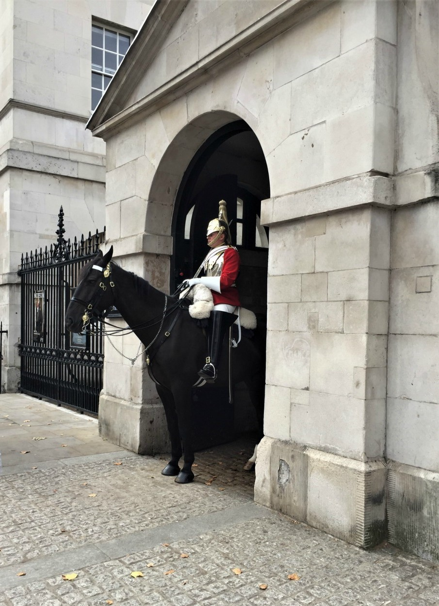 Mounted trooper of the Household Cavalry, Horse Guards, London, September 2017 (Photo: Sarah Sundin)