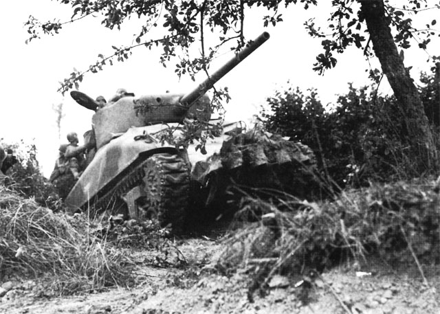 US tank, modified with iron teeth, cuts through the bocage (hedgerows) in Normandy, France, July 1944 (US Army Center of Military History)