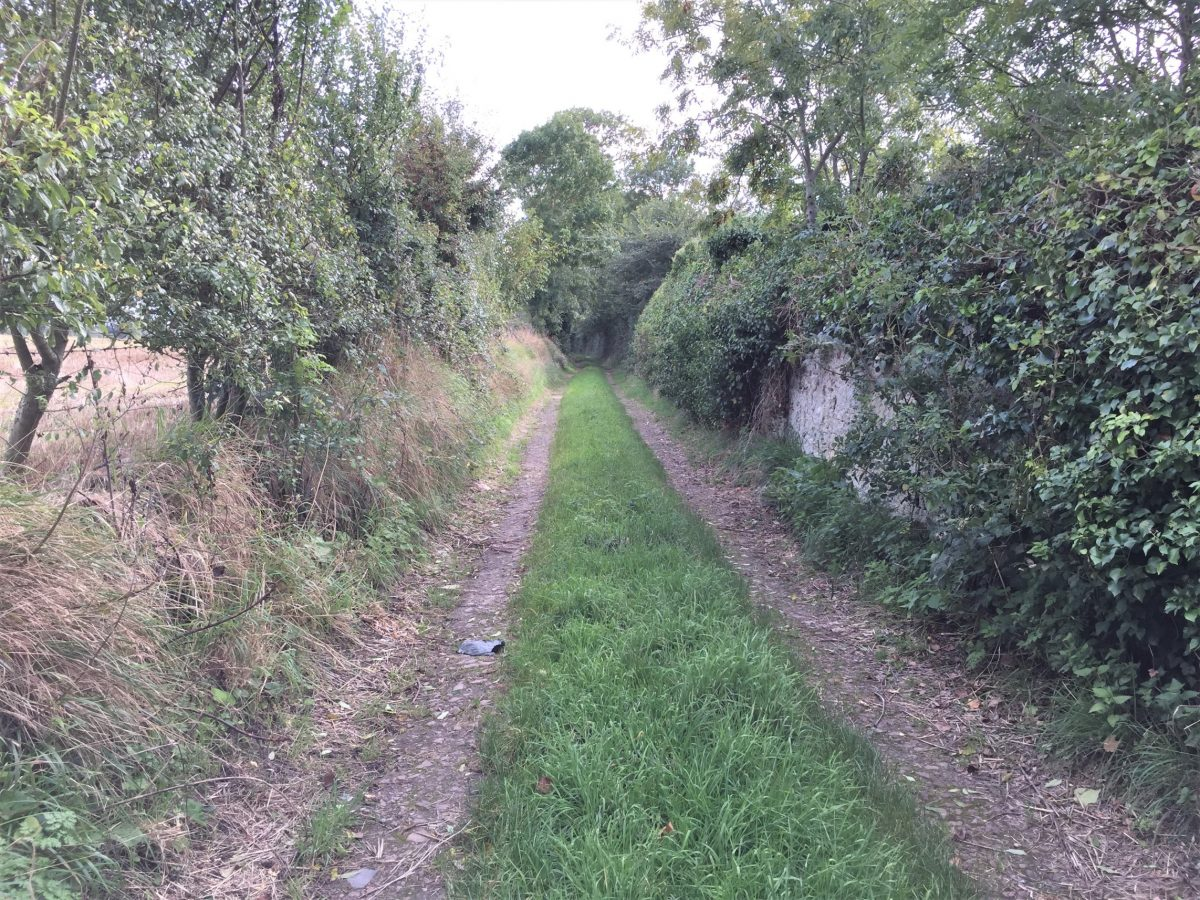 Lane through the bocage (hedgerows) near Pointe du Hoc (Photo: Sarah Sundin, September 2017)